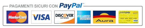 Paypal_payment_icon.png